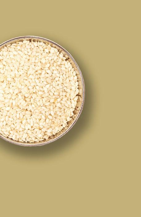 Sesame Butter Mini